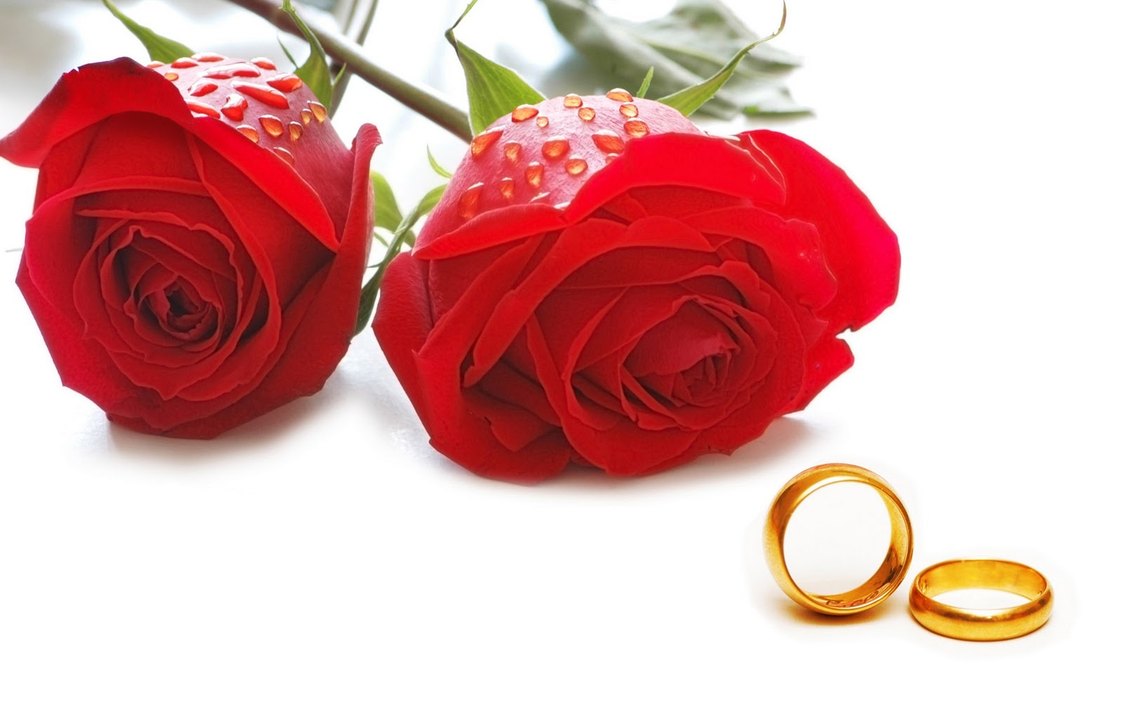 Happy Rose day Shayari for Girlfriend in Hindi for 2018