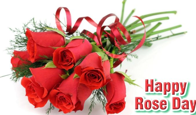 Happy Rose Day Message for Girlfriend for 2018 | SMS | Poem | Shayari | Status