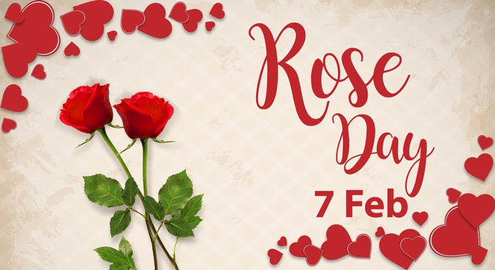 Happy Rose day Shayari for Girlfriend in Hindi for 2018 | For Wife Too