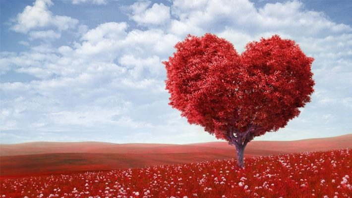 Happy Valentine's Day Wishes Images for Boyfriend 2018 | Romantic | HD
